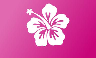 Hibiscus Lrg